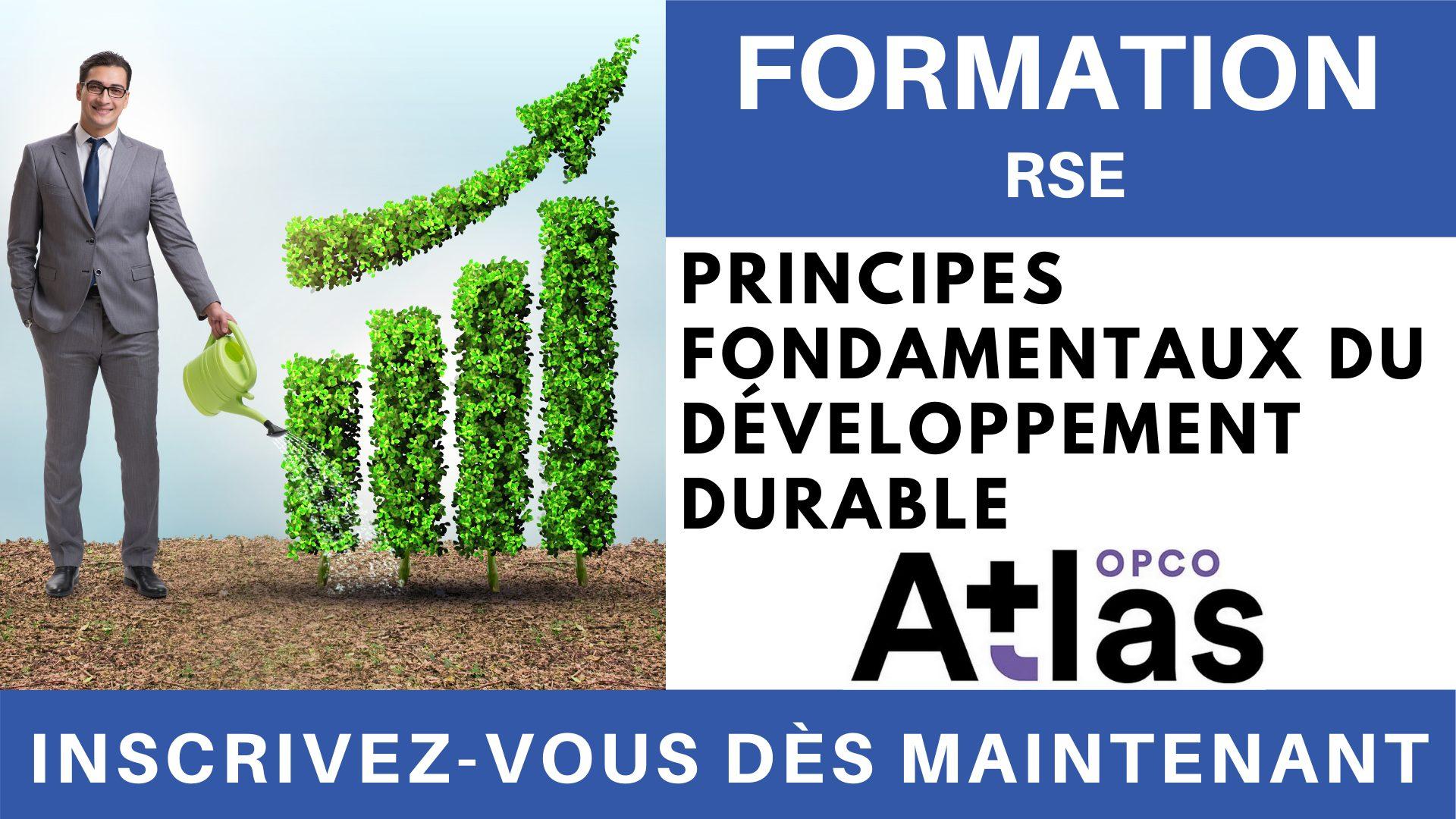 Formation RSE - Principes fondamentaux du développement durable