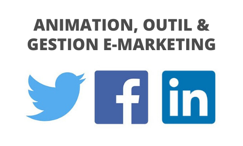 Formation Animation, outil & gestion e-marketing