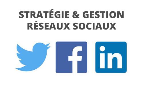 Formation stratégie et gestion réseaux sociaux