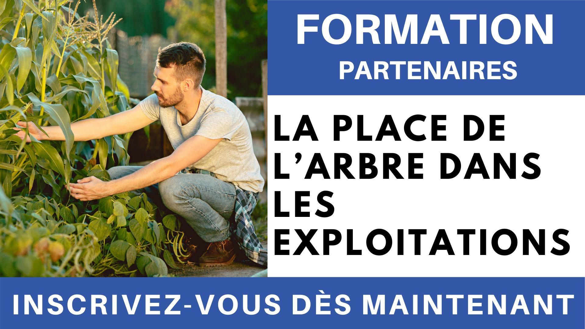 Formation PARTENAIRES - La place de l'arbre dans les exploitations
