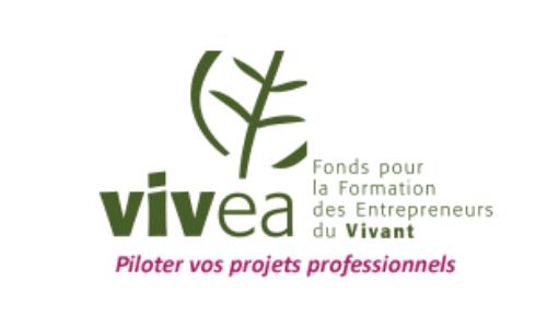 Logo FAF VIVEA 2020